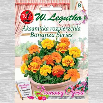 Crăițe Bonanza series, mix multicolor