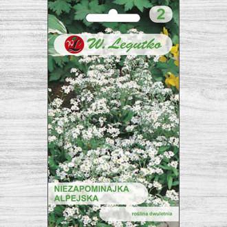 Floare de nu mă uita albă imagine 6