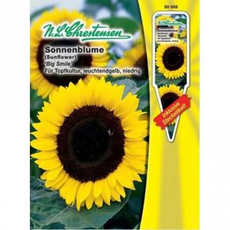 Floare soarelui decorativă Big Smile