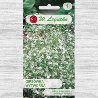 Floarea miresei (Gypsophila) albă