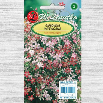 Floarea miresei (Gypsophila) stelată, mix multicolor imagine 3