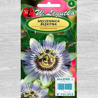 Floarea pasiunii 2 imagine 1