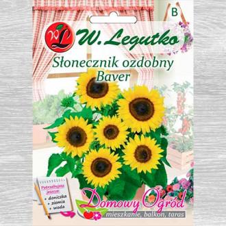 Florea soarelui decorativă Baver