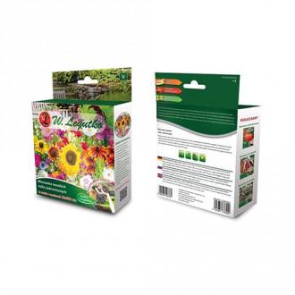 Flori anuale pentru gard viu, mix multicolor
