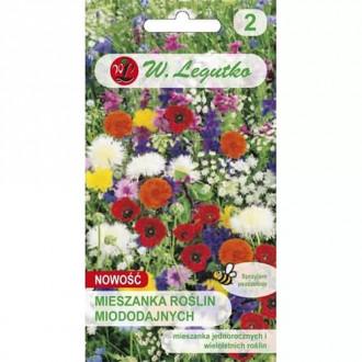 Flori comestibile, mix multicolor