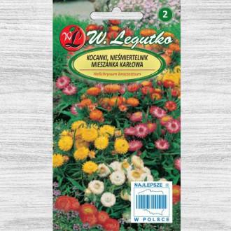 Flori de paie Tom Thumb, mix multicolor imagine 1