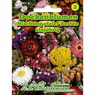 Flori de vară pentru uscare, mix multicolor