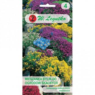 Flori perene pentru stâncării, mix multicolor imagine 6