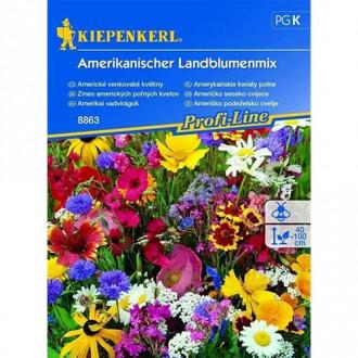 Flori sălbatice American Country, mix multicolor imagine 1