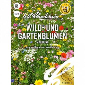 Flori sălbatice și de grădină, mix multicolor