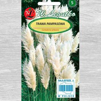 Iarbă de pampas albă imagine 1