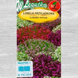 Lobelia curgătoare, mix multicolor imagine 1