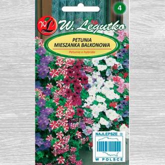 Petunie pentru balcon, mix multicolor