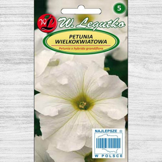 Petunie grandiflora albă