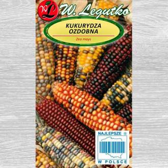 Porumb ornamental, mix multicolor imagine 3