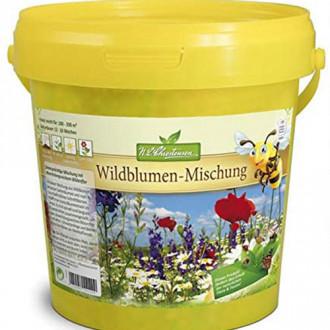 Flori și ierburi sălbatice pentru grădină, mix multicolor