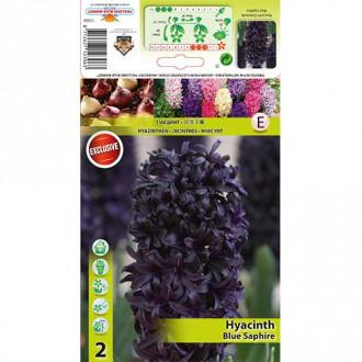 Zambile Blue Saphire imagine 4