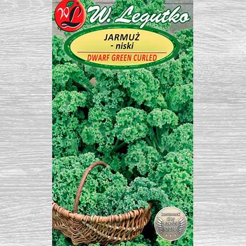Varză Kale pitică Green Curled imagine 1 articol 69474