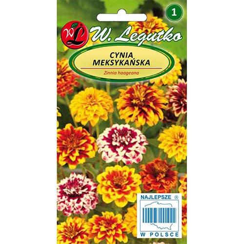 Zinnia (Cârciumăreasă) mexicană, mix multicolor imagine 1 articol 78547