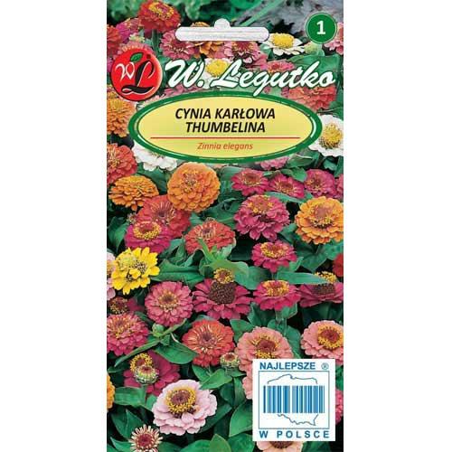 Zinnia (Cârciumăreasă) Thumbelina, mix multicolor imagine 1 articol 78545