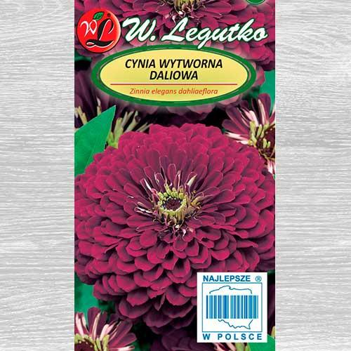 Zinnia Violet Queen imagine 1 articol 69577