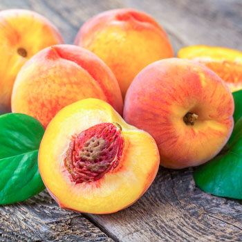 Pomi fructiferi Tsesmelis