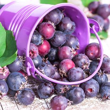 Grădină și sănătate